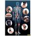 ORTHOMAG Dispositivi di magnetoterapia a bassa frequenza